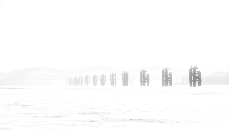 Norderelbpfähle in der Elbe vor den Elbbrücken bei Nebel Hamburg