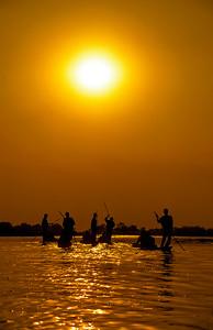 Makoras on the Okavango