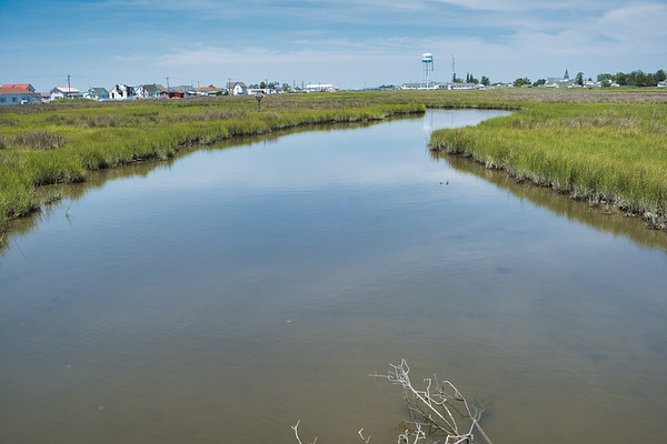 A Cruise to Tangier Island