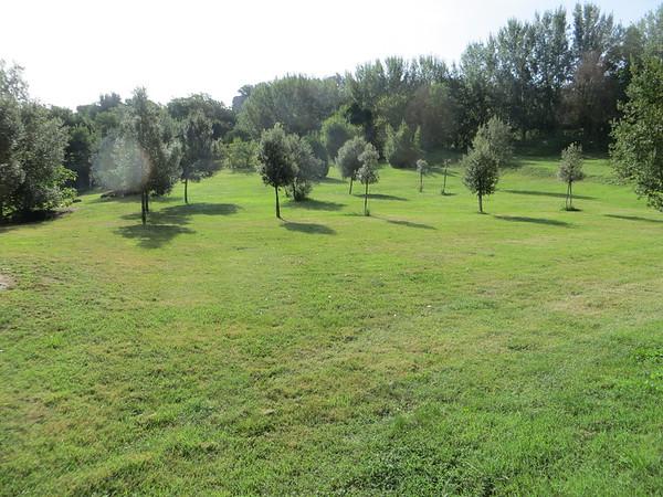 Monstri Park