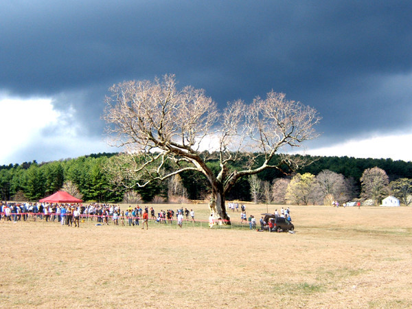 The Meadow Oak and finish line area of the Leatherman's Loop.