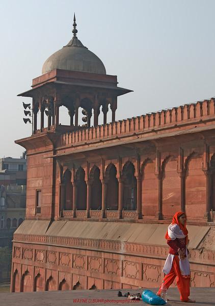 INDIA2010-0129A-86A.jpg