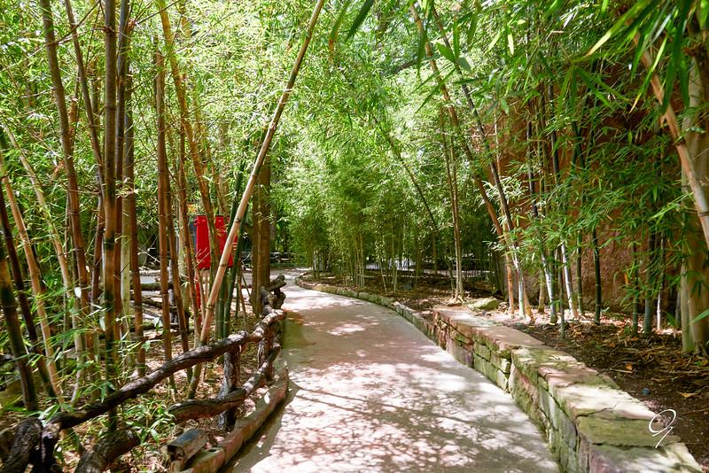 Biopark 300616W-37.jpg