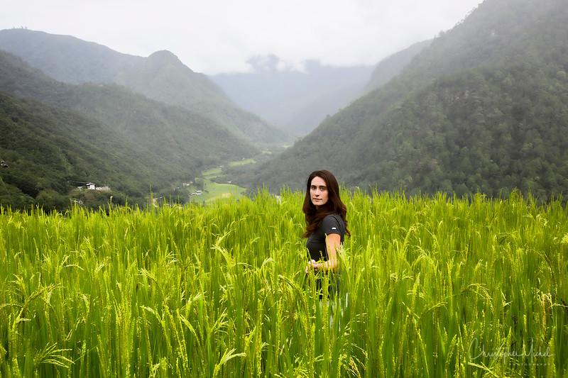 punakha-dzong_chorten-nebu_20120917_8571.jpg