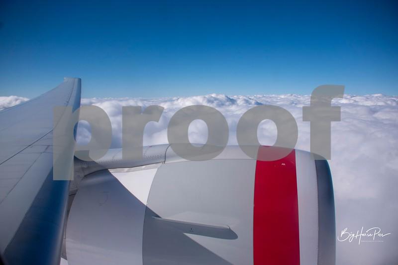 flight feb '19 d.jpg