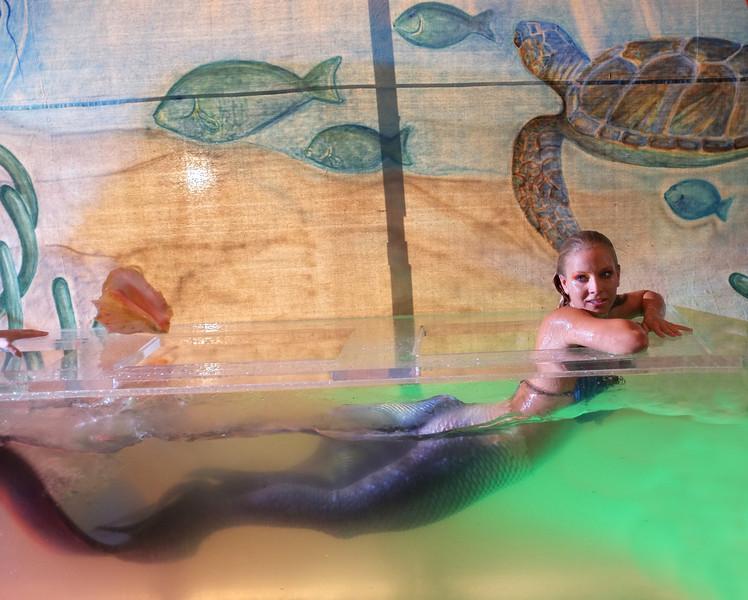 Mermaids 3.jpg