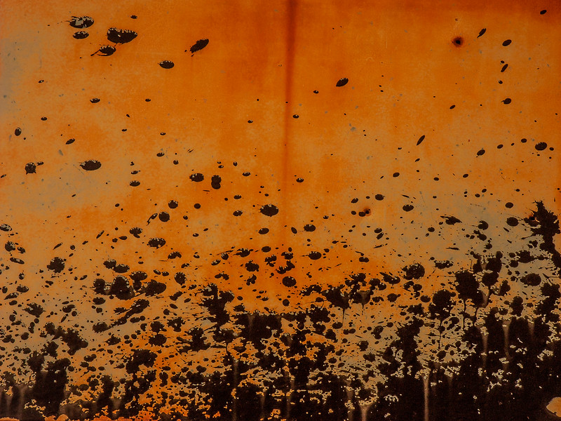 Rust, Summerdale, Alabama, 2004