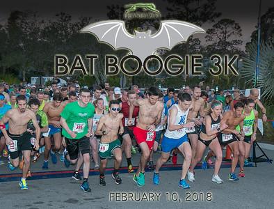 Bat Boogie, 2018