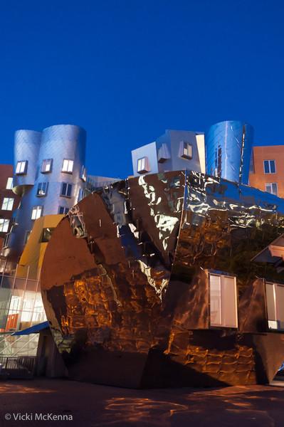 2009-011-MIT-17.jpg