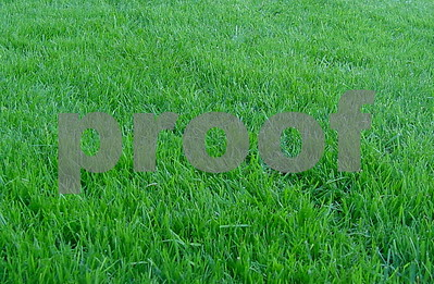 practices-to-consider-for-healthy-lawn-maintenance