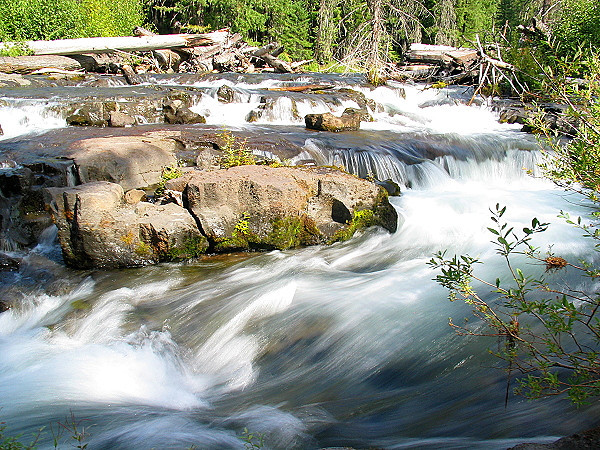 Rogue River (33704478).jpg