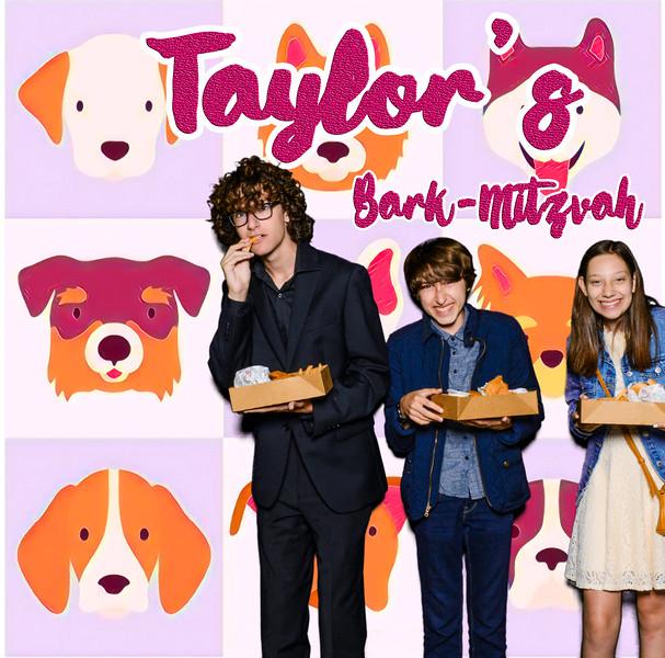Taylors pawmitzvah-20734.jpg