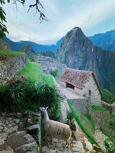 Machu Picchu - Watchman's hut