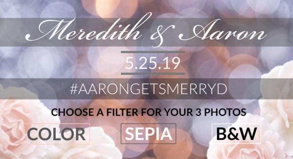 Meredith and Aaron's Wedding