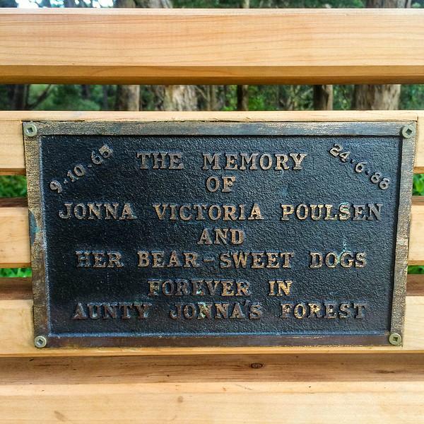The Memory of Jonna.jpg