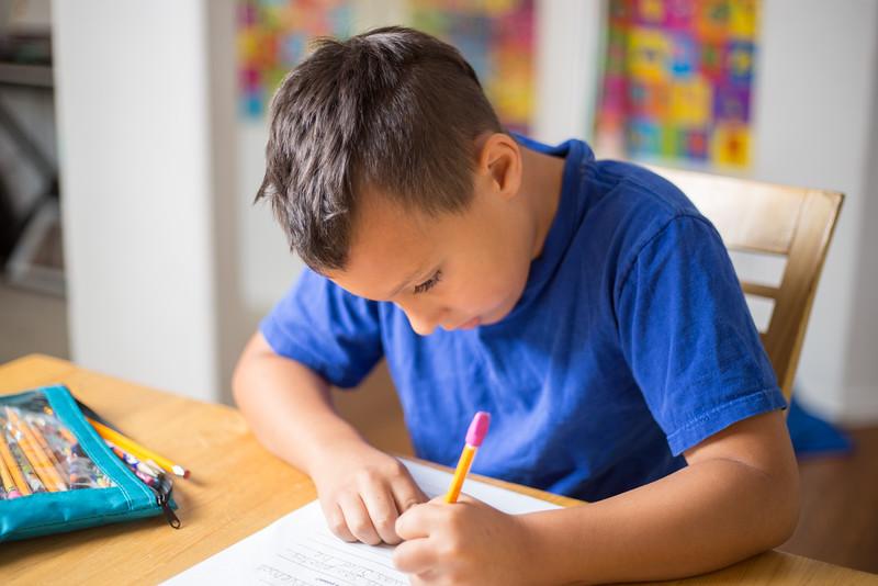 Homeschool boy learning.