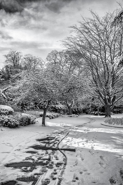 more snow in Ripon-3.jpg
