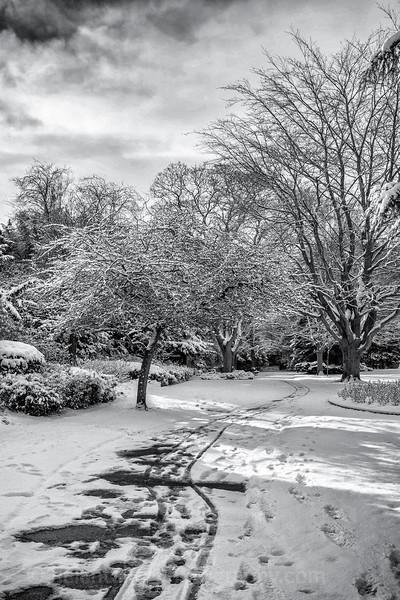 more snow in Ripon-3.jpg