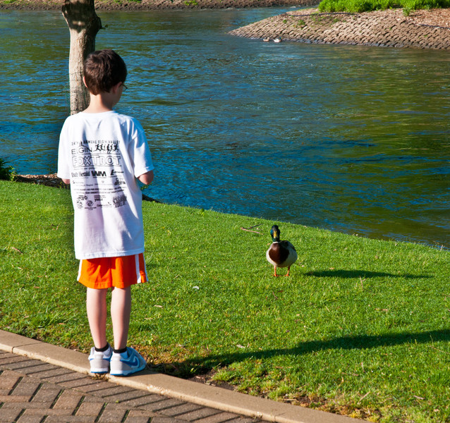 11 June : The Duck Whisperer visits the Fox River