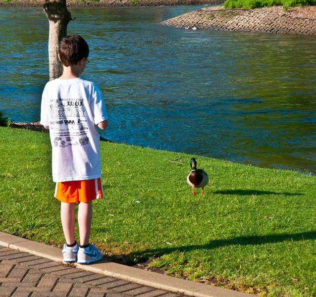 11 June : The Duck Whisperer visits the Fox River