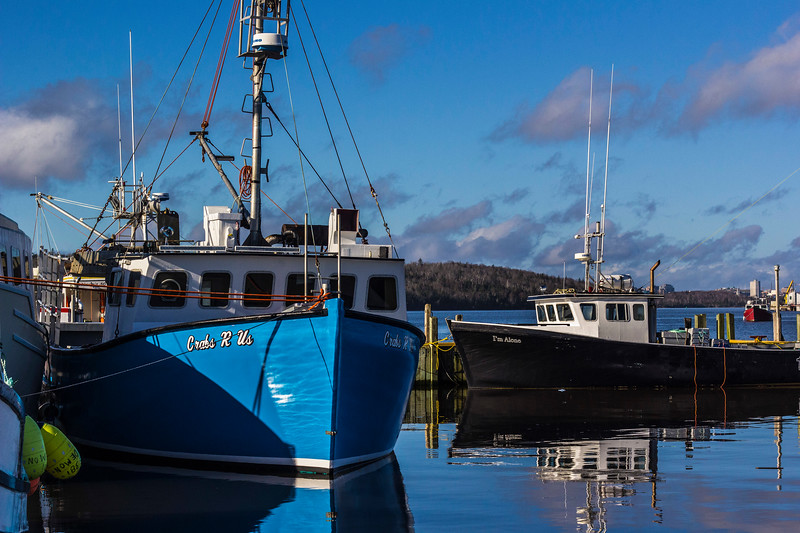 localfishnboats.jpg