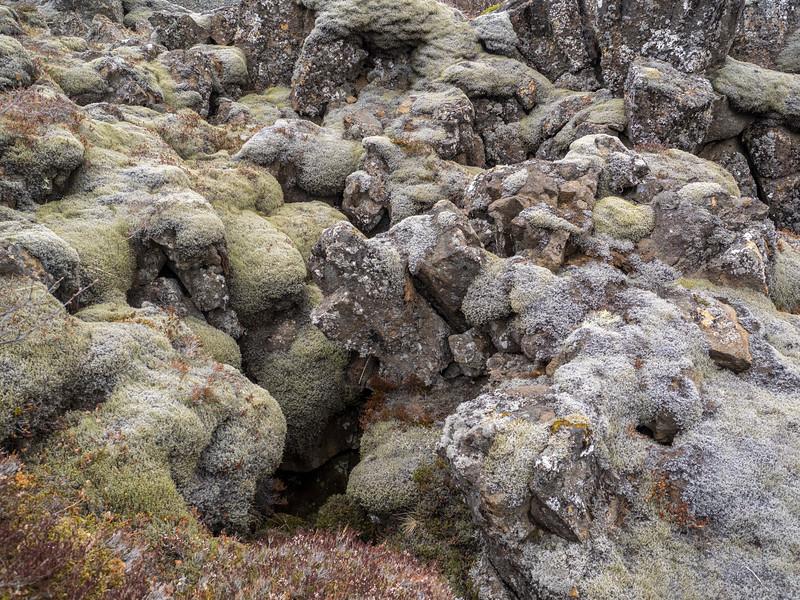 2015-06-05_Reykjavik-Fludir_0259-2.jpg