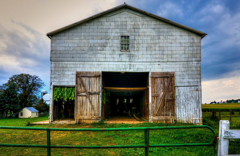 harvest 2016 - Tobacco Barn (p).jpg