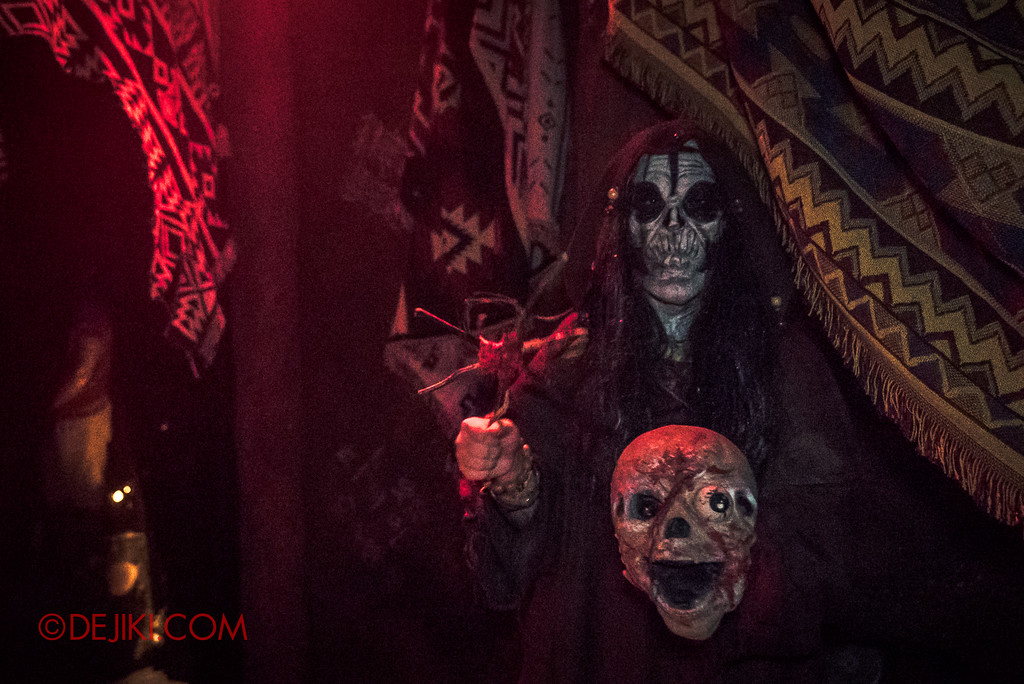 Halloween Horror Nights 7 - HEX haunted house / skeleton hex