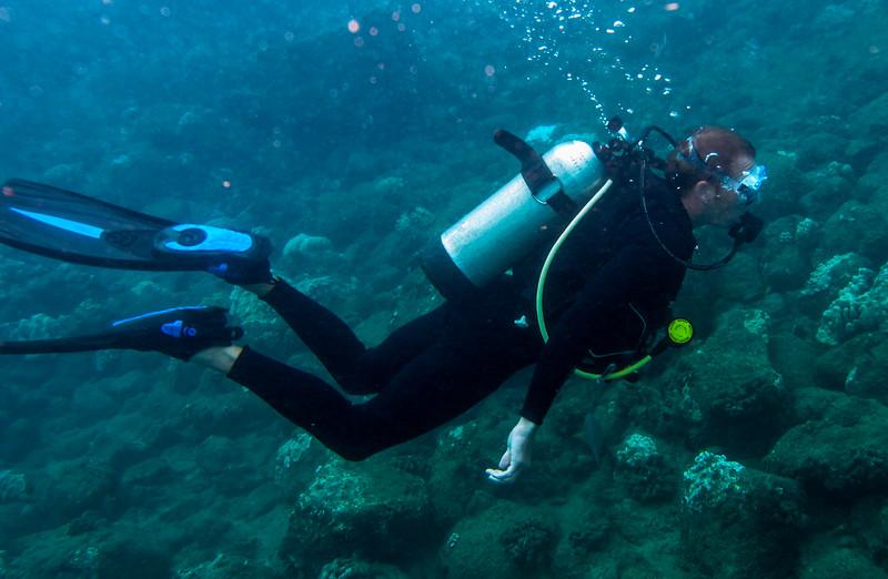 Hawaii diving - 054.jpg