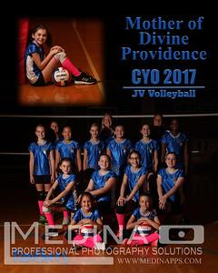 JV Volleyball Team Photos