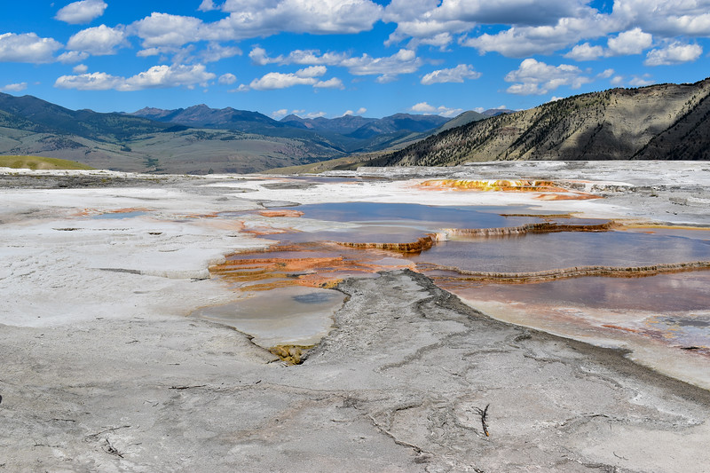 Yellowstone National Park - Mammoth Hot Springs (4-19-20)