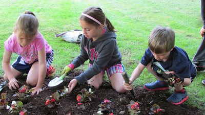 Third Graders plant flowers at C.T. Plunkett 05302014