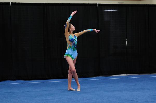 Gymnastics - WI State