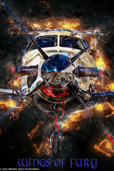 Wings of Fury-2.jpg