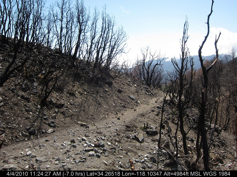 20100404067-Angeles National Forest, Strawberry Peak trail.JPG