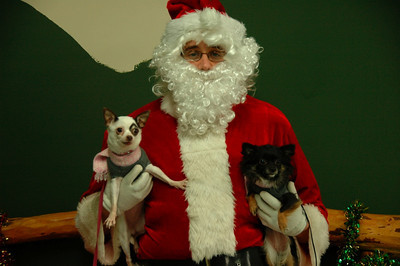 Dogs and Santa 2011