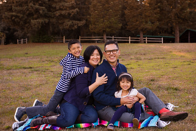 The Wong Family 2016