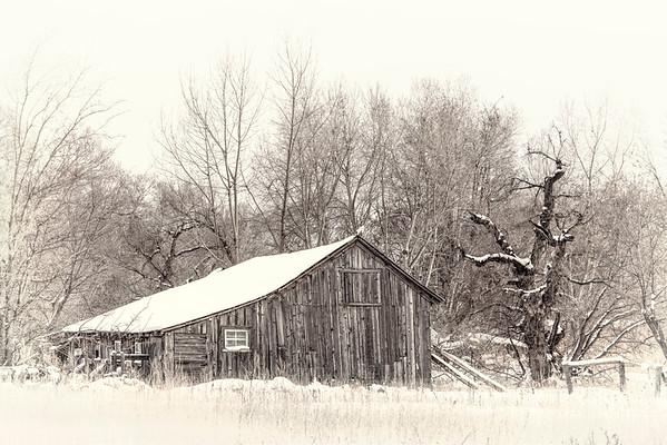 Cabins, Barns & Buildings