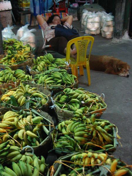 Street Food & Electric Neighbourhoods