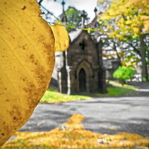 Autumn, Trinity Church Cemetery & Mausoleum, Washington Heights, NYC