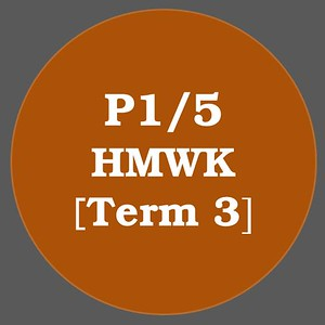 P1/5 HMWK T3