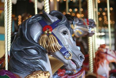 2008-01 Carousel