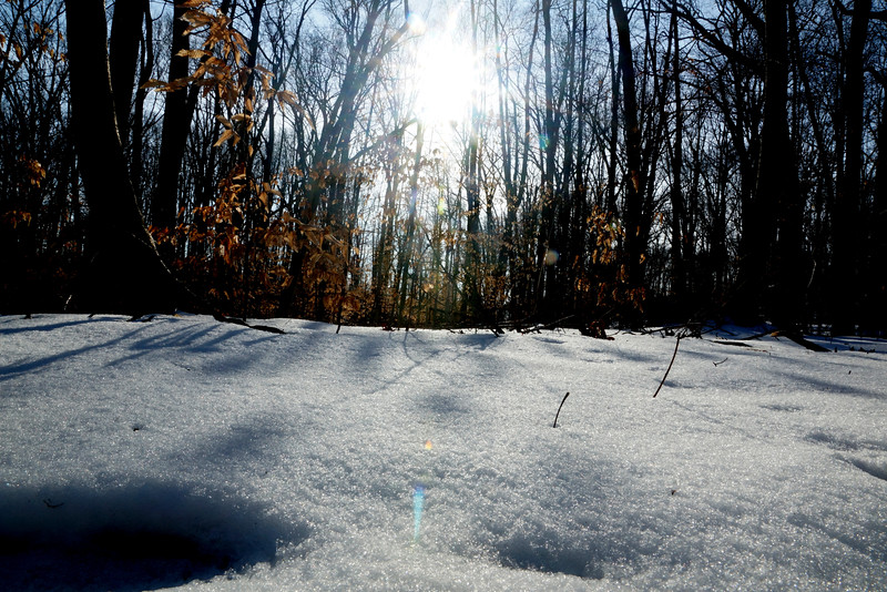 Clayton winter.jpg