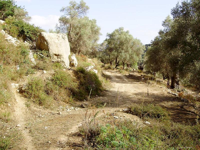 03-Een-rotsblokje-in-de-weg.JPG