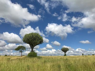 Tanzania 2019