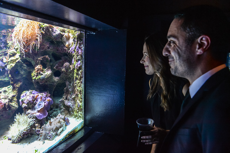 Event Photography at a private dinner at the Vancouver Aquarium. Photography by Scott Brammer