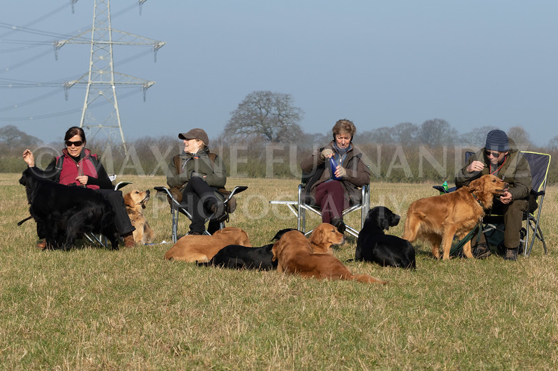 Dog Training Novice GD Feb2019-5989.jpg
