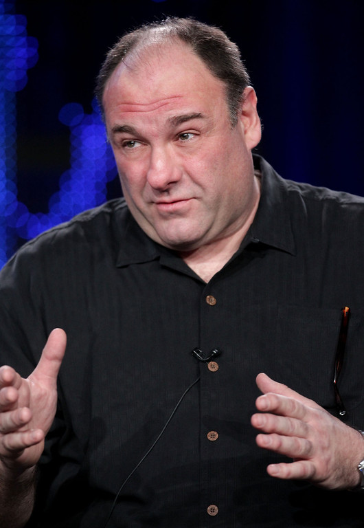 . Actor James Gandolfini speaks during the \'Cinema Verite\' panel at the HBO portion of the 2011 Winter TCA press tour held at the Langham Hotel on January 7, 2011 in Pasadena, California.  (Photo by Frederick M. Brown/Getty Images)