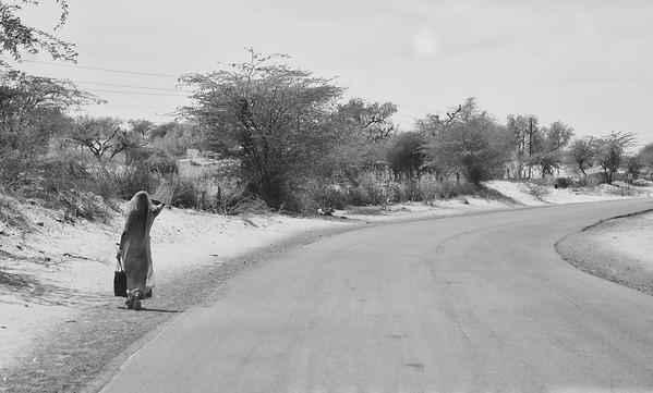 Bikaner, Chittorgarh & Fatehpur