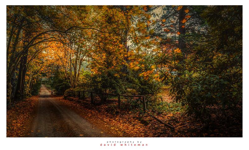 Le Var Autumn
